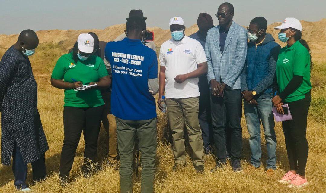 Projet Agricole : Le Directeur De L'Emploi En Visite à Ross Bethio